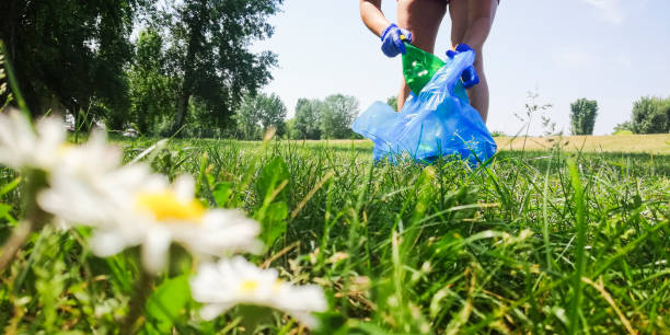Volunteer collecting trash in the local park Young woman is cleaning her local park of the common trash - plastic bottles, bags, cans, cigarette boxes and other recyclable waste. environmental cleanup stock pictures, royalty-free photos & images