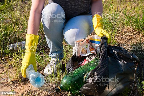 Volunteer Girl In Yellow Gloves Collects Garbage Selective Focus Stock Photo - Download Image Now