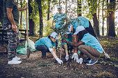 istock Volunteers planting a tree 1130655067