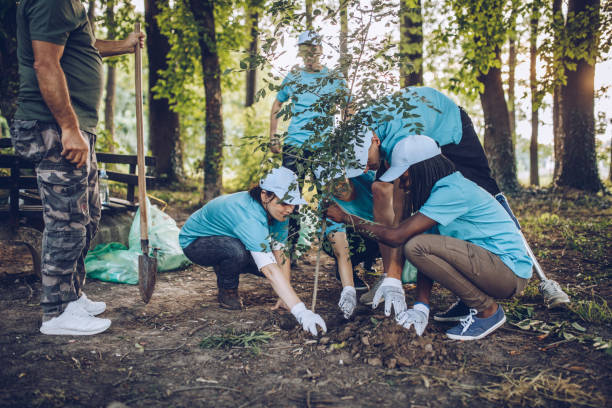 Volunteers planting a tree Multi-ethnic group of people, cleaning together in public park, saving the environment, disability man helping them. environment stock pictures, royalty-free photos & images