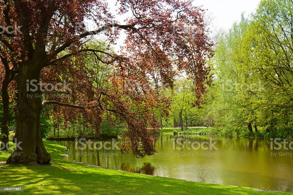 Vondel park, Amsterdam, Holland stock photo