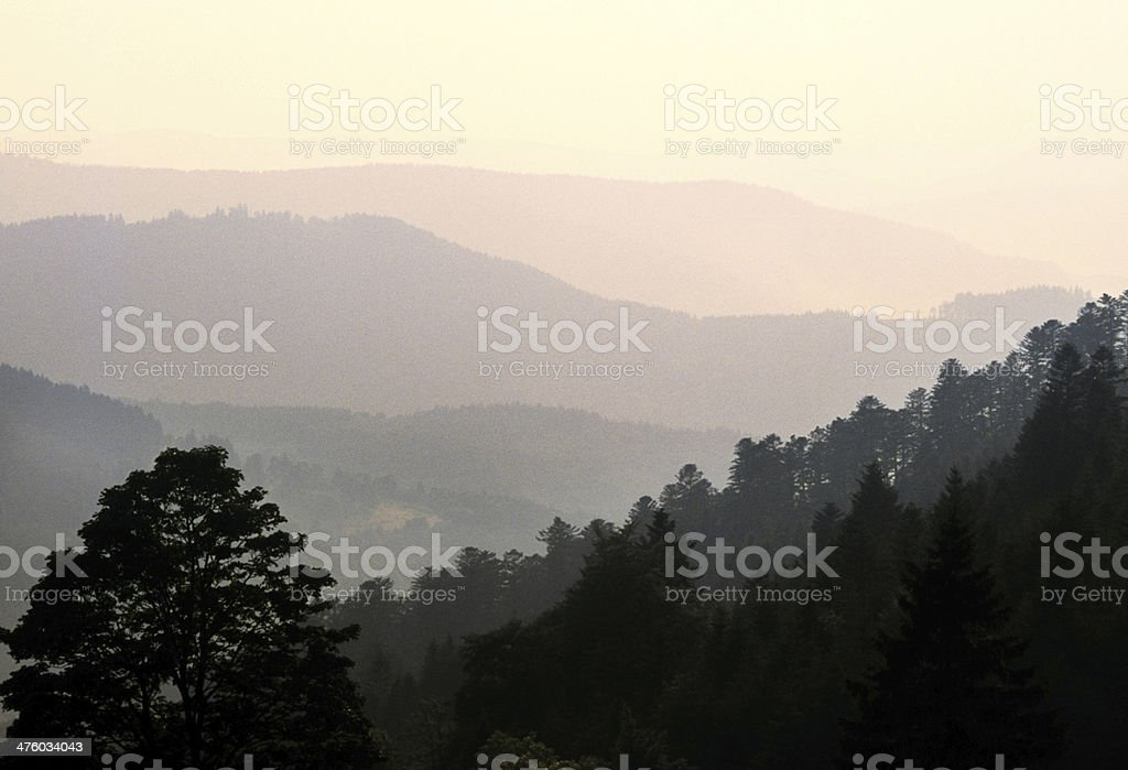 vosges royalty-free stock photo