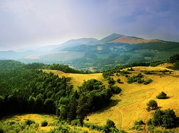 vosges the vosges mountains alsace lorraine france grand est stock pictures, royalty-free photos & images