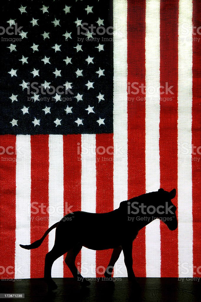 Vote Democrat royalty-free stock photo