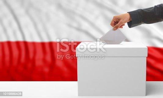 istock Voter on a Poland flag background. 3d illustration 1019886428