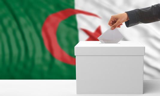 Voter on an waiving Algeria flag background. 3d illustration