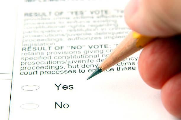 voting - ballot stock pictures, royalty-free photos & images