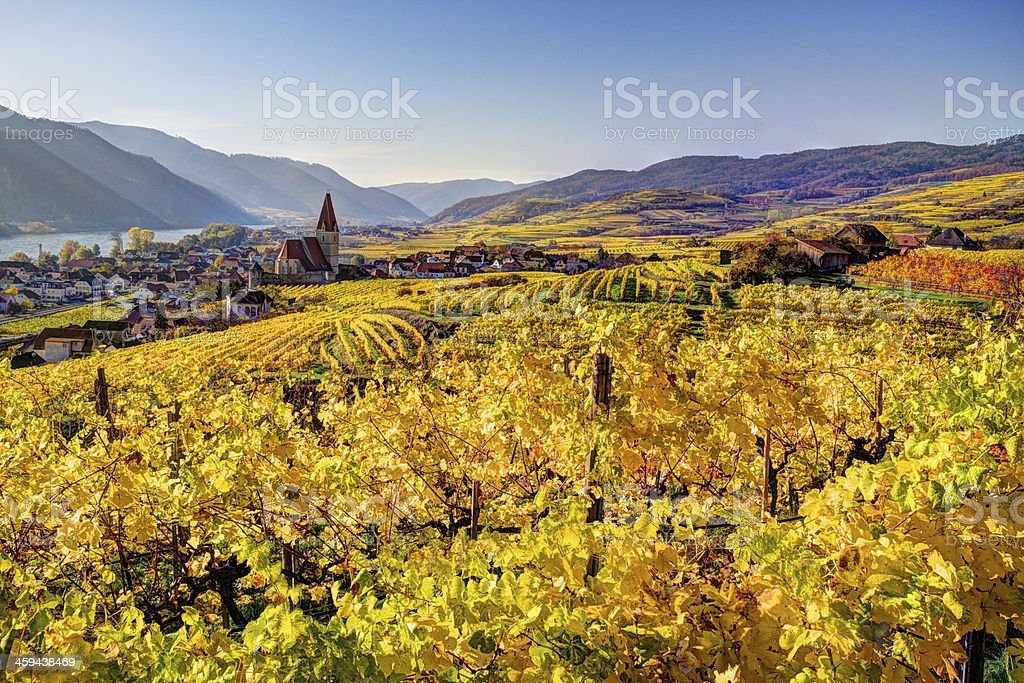 Wachau, Village of Vineyards stock photo