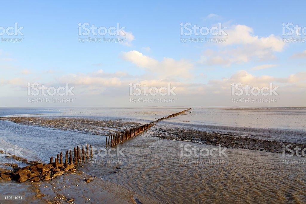 Wadden Sea ebbing landscape stock photo