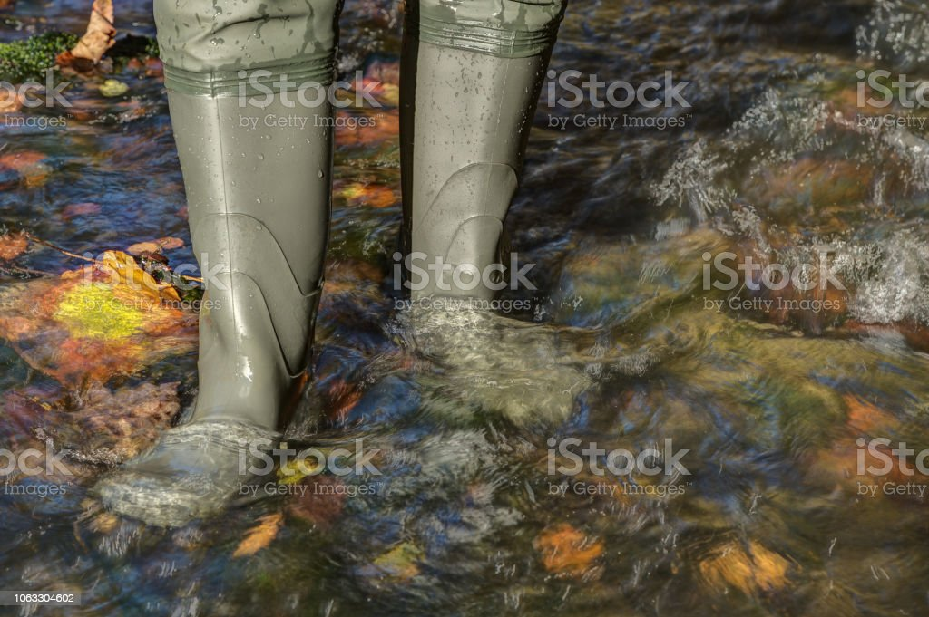 Waders in the brook. - Royalty-free Adventure Stock Photo