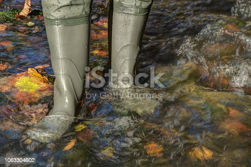Hiker with high rubber boots goes through a creek in which lies colorful autumn leaves. Rubber boots are the right shoes for every terrain.