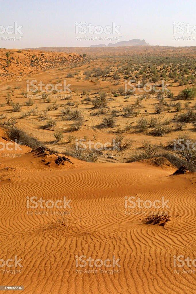 Wadi Al Faya royalty-free stock photo