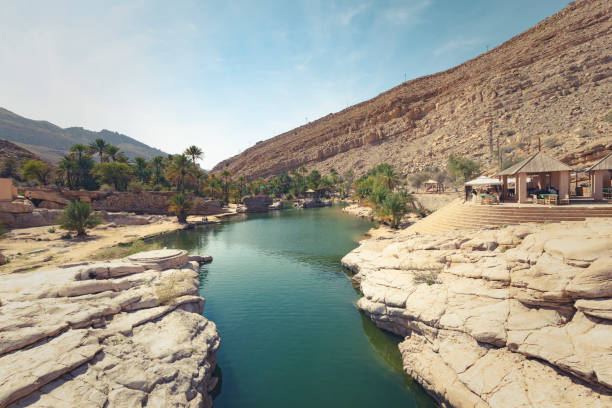 wadi bani khalid oasis, oman Wadi Bani Khalid, Oman - November 19, 2014: people relaxing at the amazing view of the emerald pools in Wadi Bani Khalid, Oman riverbed stock pictures, royalty-free photos & images