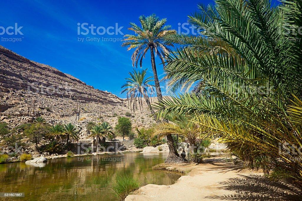 wadi bani khalid oman stock photo