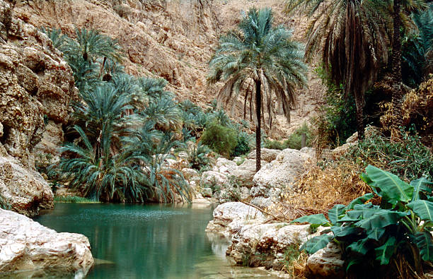 wadi shab - oman travel stock-fotos und bilder