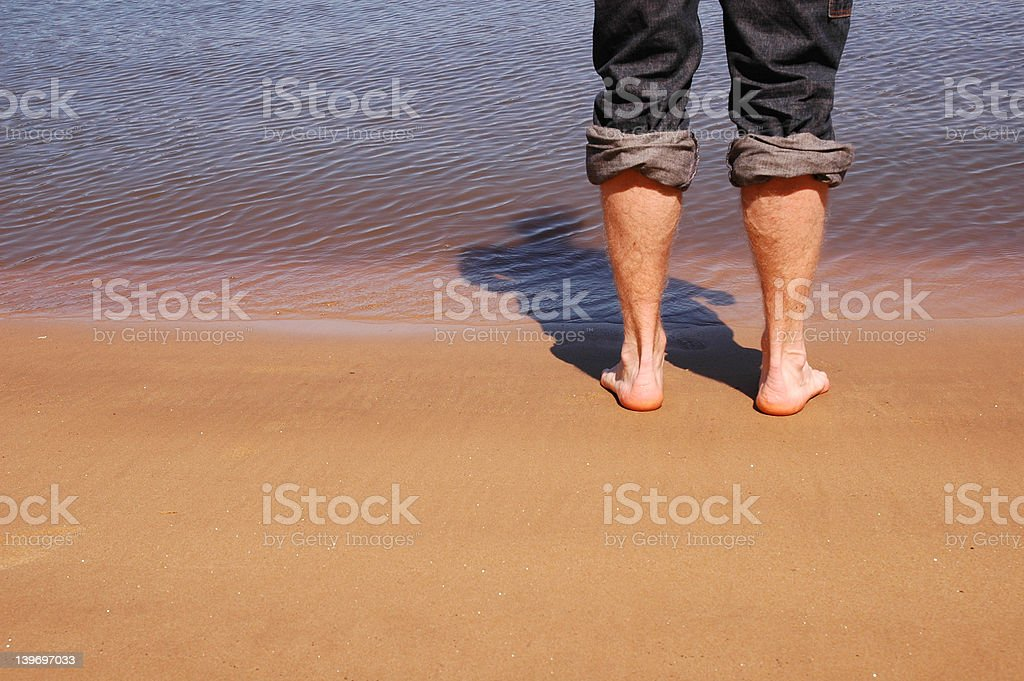 Wading royalty-free stock photo