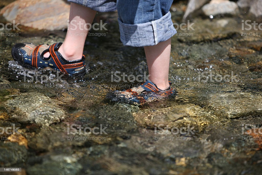 Wading through the water royalty-free stock photo