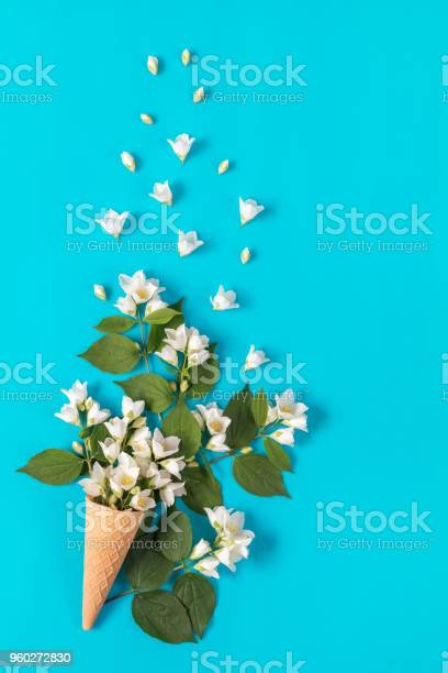 Waffle cone with jasmine flower bouquet on blue background picture id960272830?b=1&k=6&m=960272830&s=612x612&h=9idw5vtuvsxkeuvn0gpllpcmgaq7n9ejtn9 lusqb28=