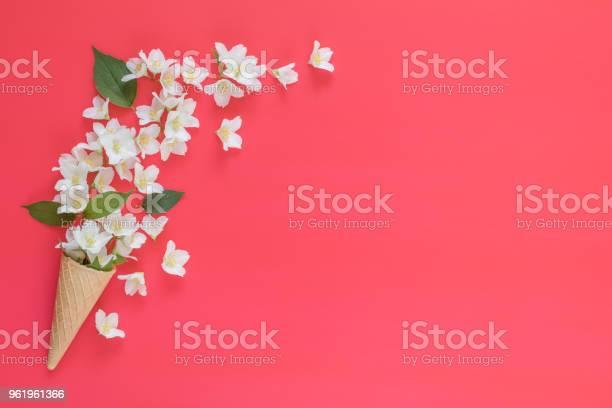 Waffle cone with jasmine flower bouquet on pink background picture id961961366?b=1&k=6&m=961961366&s=612x612&h=adein8rw8moq3gal9ax igjlkkhwe801 5xa ixywl4=