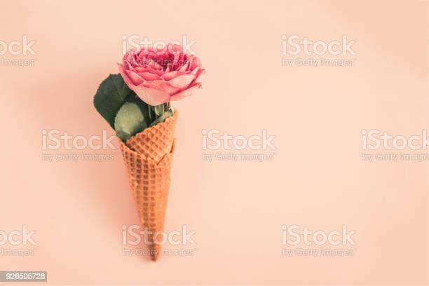 Waffle cone with rose flower from above picture id926505728?b=1&k=6&m=926505728&s=612x612&h=h9p6 hodlsbydeqyqufmcxl78bgy8evbzwkfzgzgpto=