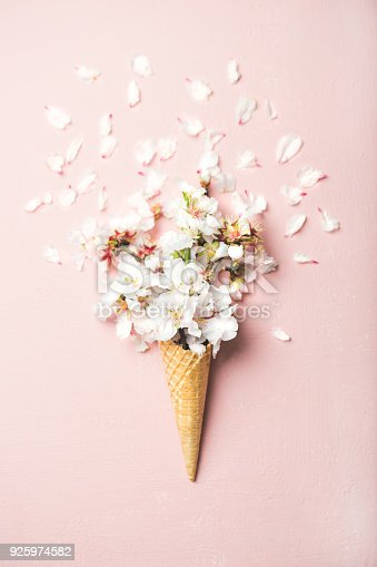 istock Waffle cone with white almond blossom flowers 925974582