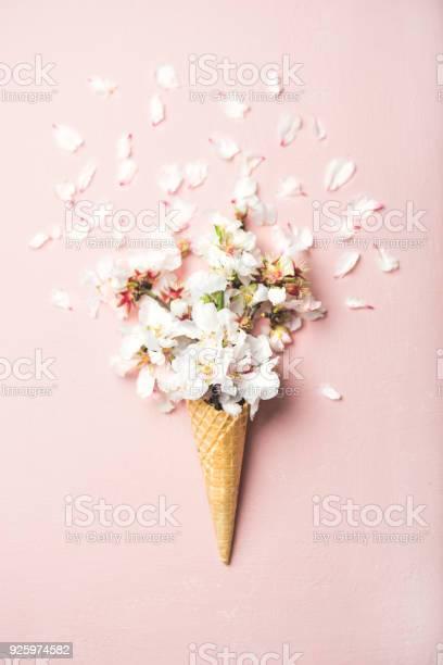 Waffle cone with white almond blossom flowers picture id925974582?b=1&k=6&m=925974582&s=612x612&h=4c09pzekcto6urrn9ci gemgsbkqj8icdmtahz9jbjc=