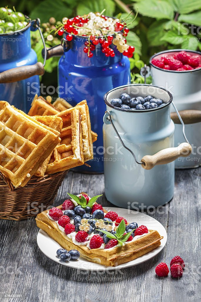 Waffles with whipped cream and berry fruit royalty-free stock photo