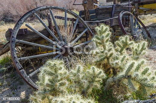 Old wagon, wheels and cholla cactus. High desert of Eastern California.