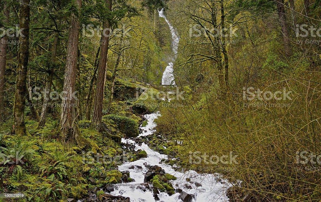 Wahkeena Waterfall stock photo