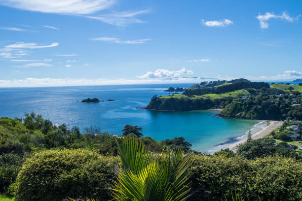 Waiheke Island Little Palm Beach south pacific ocean stock pictures, royalty-free photos & images