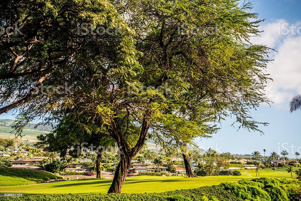 Wailea landscape, Hawaii, USA stock photo