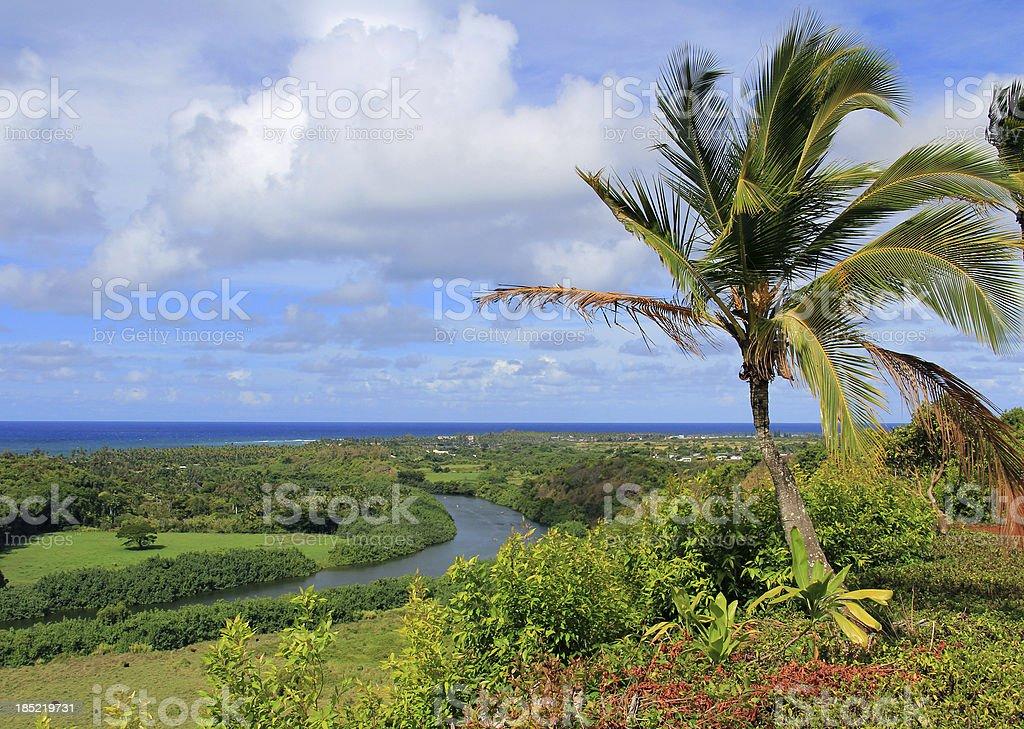 Wailea river, Pacific ocean, palm tree Kauai Hawaii scenic stock photo