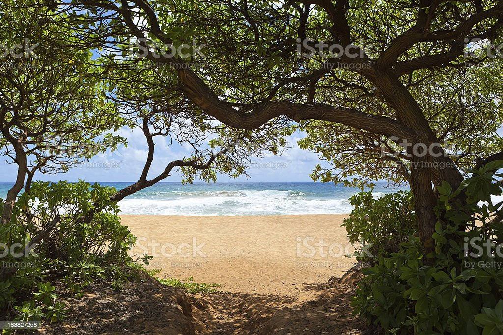Wailua Beach Kauai royalty-free stock photo