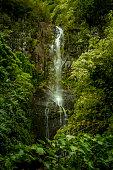 Beautiful waterfall near Hana, Maui.