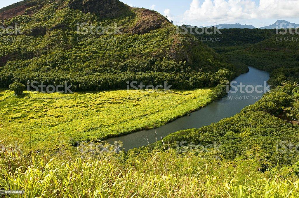 Wailua River in Kauai stock photo