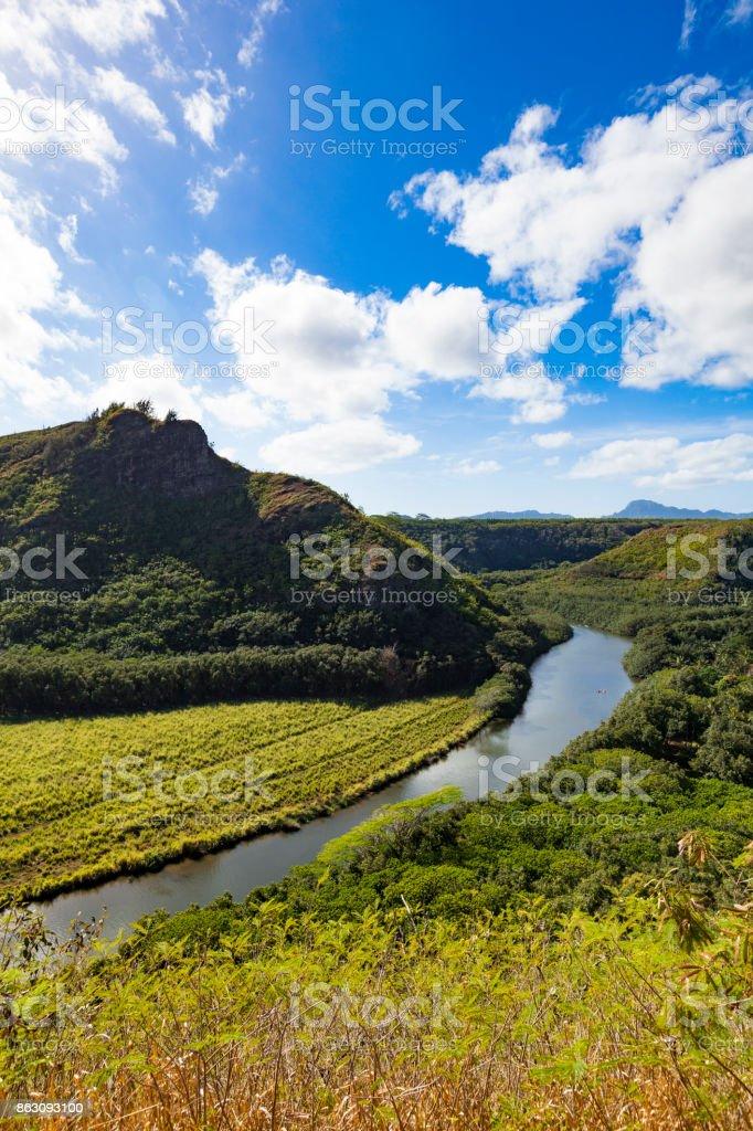 wailua river on kauai island, hawaii islands. stock photo