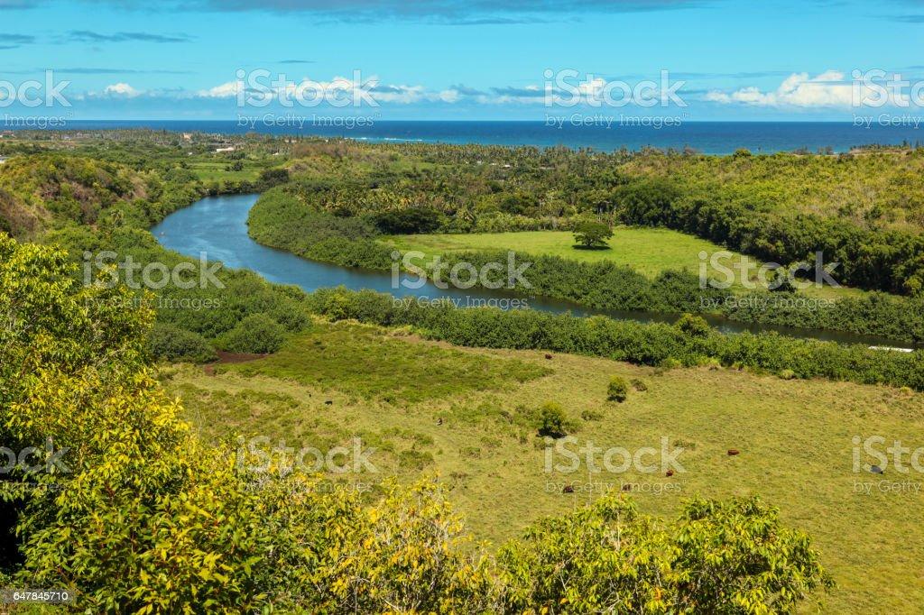 Wailua river panorama, Kauai stock photo