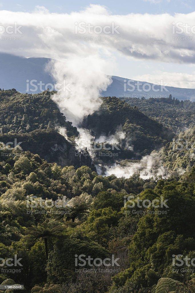 Waimangu thermal valley stock photo