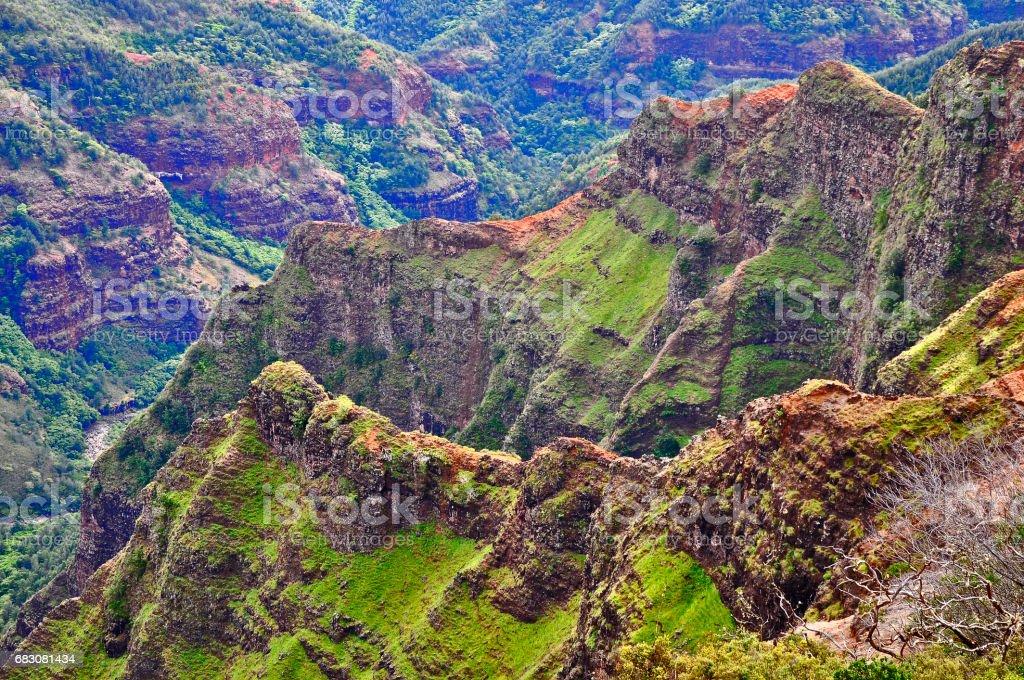 Waimea Canyon foto de stock royalty-free