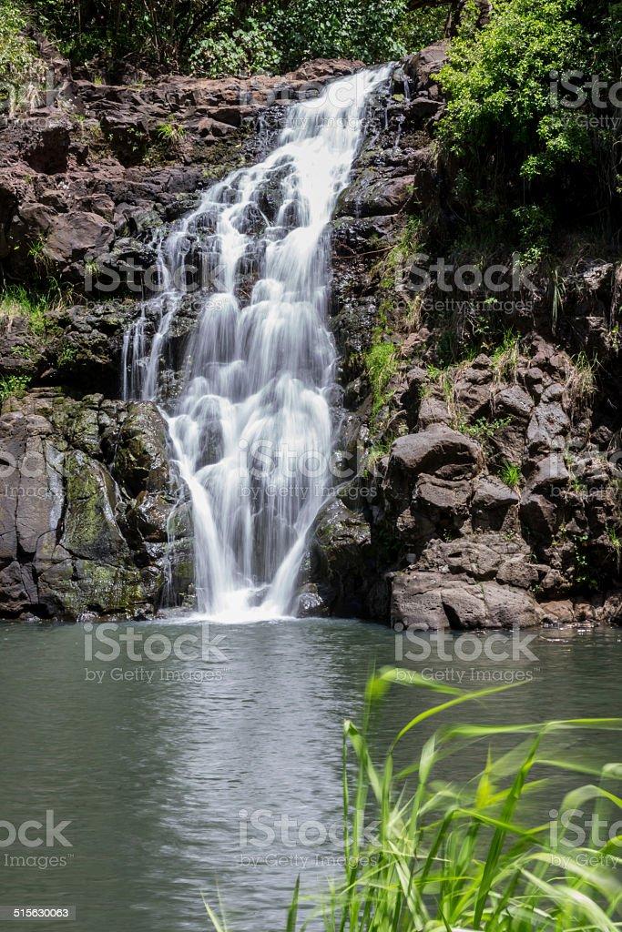Waimea Falls, Oahu, Hawaii stock photo