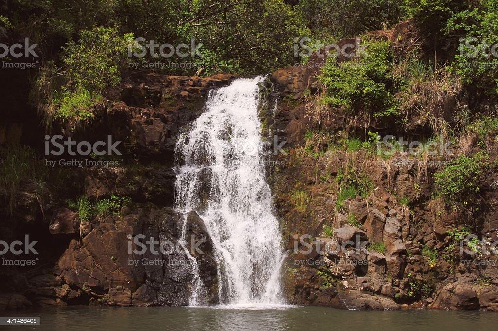 Waimea falls waterfall on Oahu Hawaii stock photo