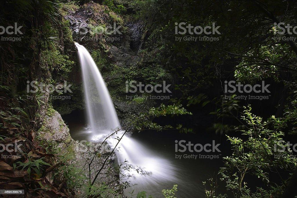 Waimoku falls trail stock photo