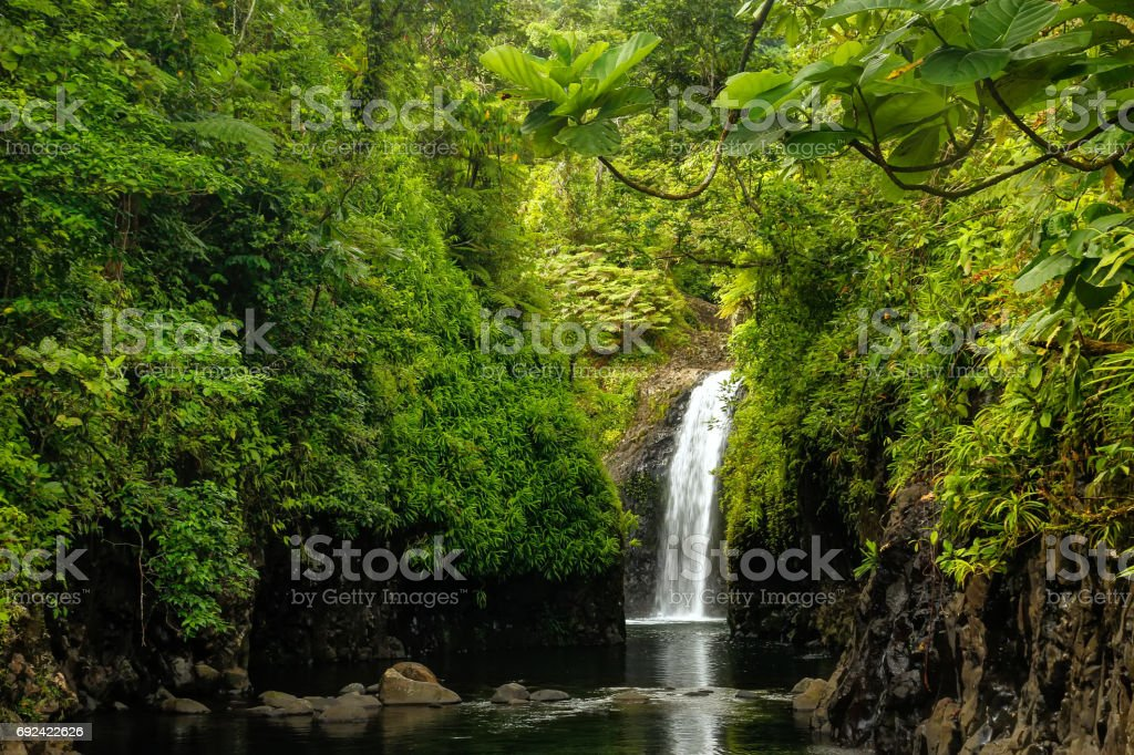Wainibau Waterfall On Taveuni Island Fiji Stock Photo More