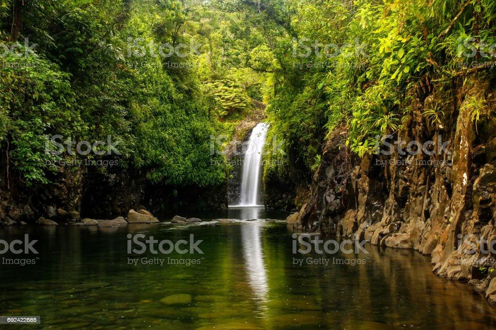 Wainibau Waterfall On Taveuni Island Fiji Stock Photo