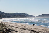 Wainui Beach is regarded as one of New Zealand's best surfing destinations