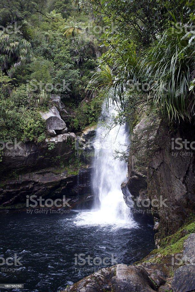 Wainui Falls, Golden Bay, New Zealand royalty-free stock photo