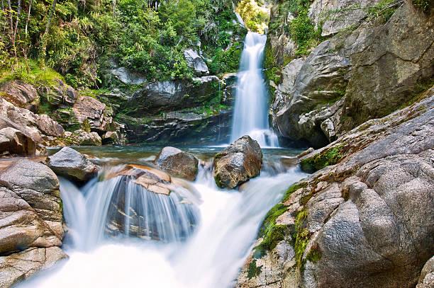 Wainui Falls, New Zealand stock photo