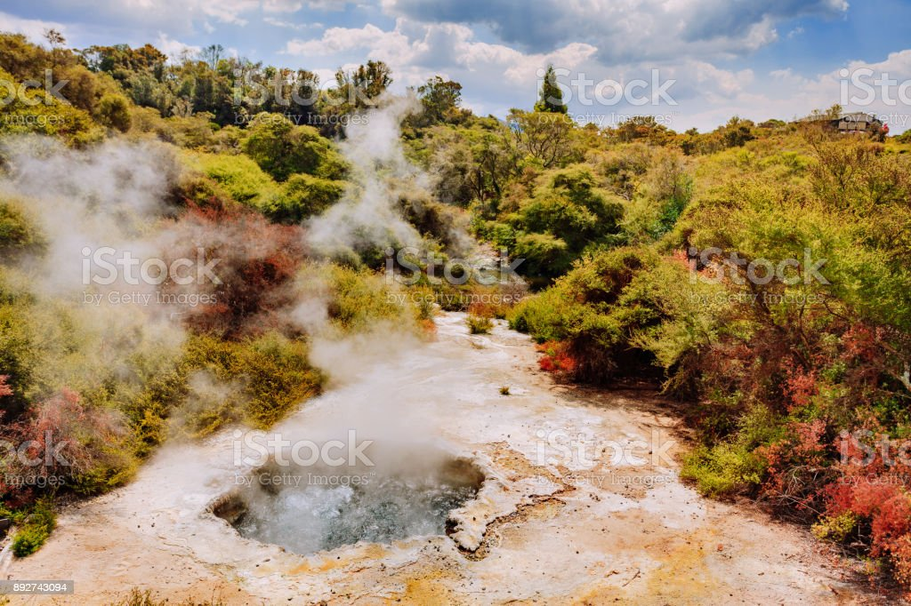 Wai-O-Tapu park New Zealand stock photo