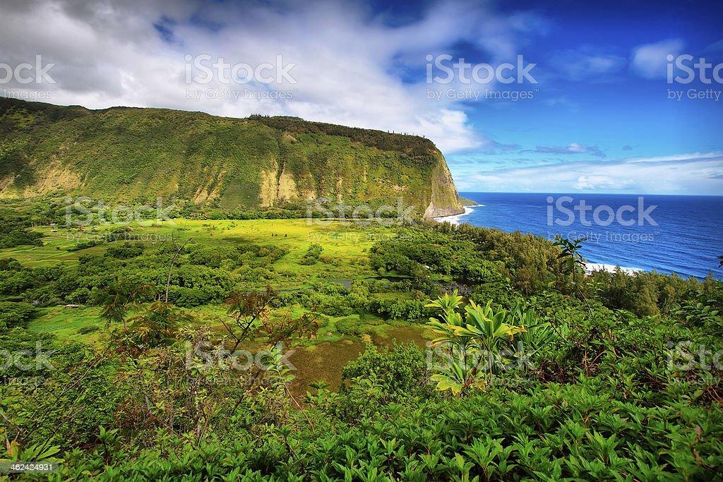 Waipio Valley view in Hawaii royalty-free stock photo