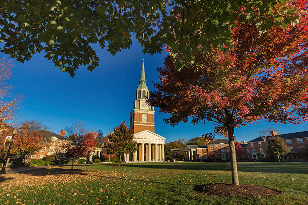 wake forest diversity essay Diversity programs apply now search our site: this program requests that applicants include a separate 1-2 page essay addressing the wake forest graduate.